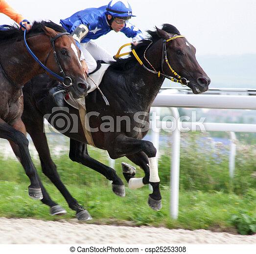 Horse racing - csp25253308