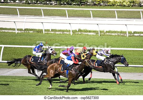 Horse Racing - csp5627300