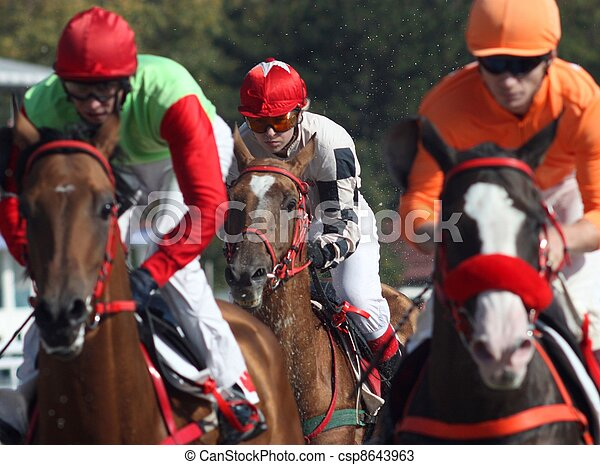 Horse racing. - csp8643963