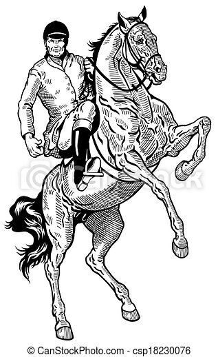 Horse Rider Horse Rider Equestrian Sport Black And White
