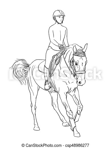 Horse Rider Line Art Vector Equestrian Sports Theme