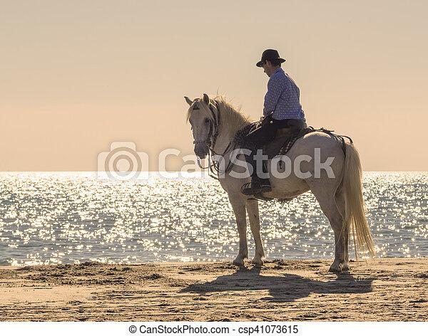 horse rider on the beach - csp41073615