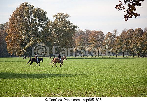 Horse riding in Parco di Monza Italy - csp6851826