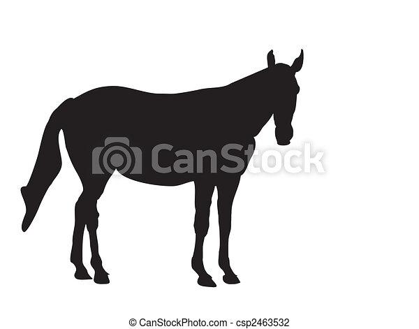 horse-silhouette - csp2463532