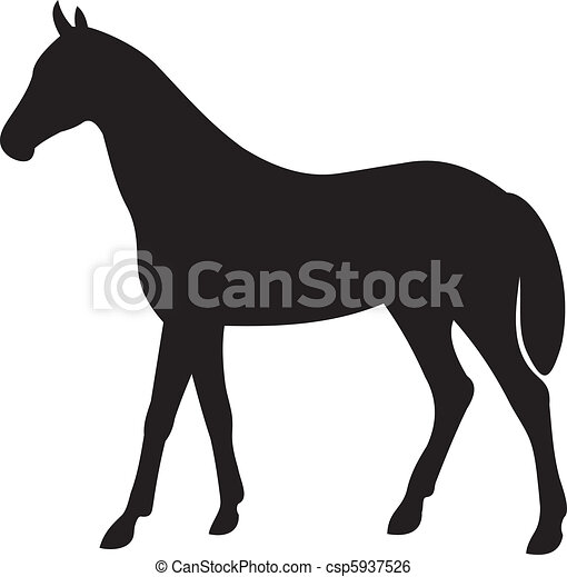 horse silhouette vector - csp5937526