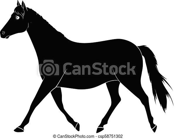 Horse Silhouette Vector - csp58751302