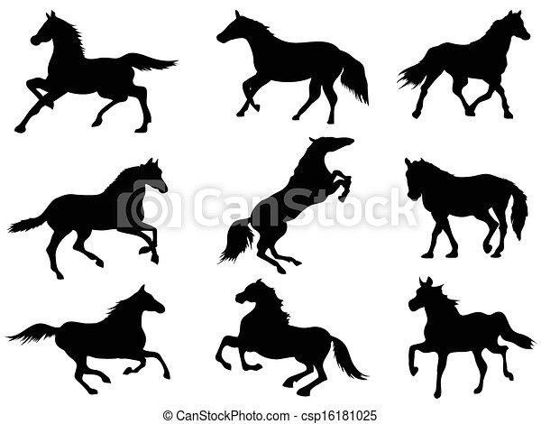 horse Silhouettes  - csp16181025