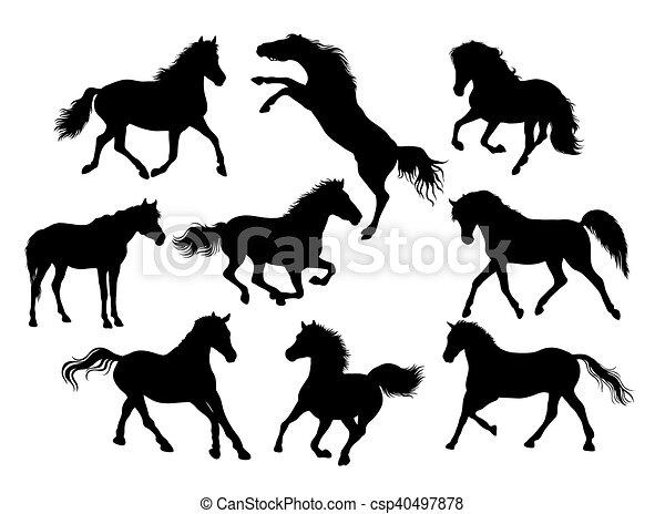 Horse Silhouettes - csp40497878