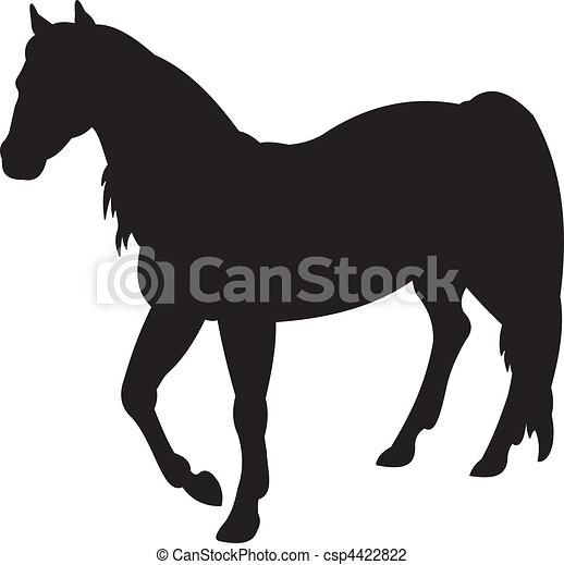Horse vector - csp4422822
