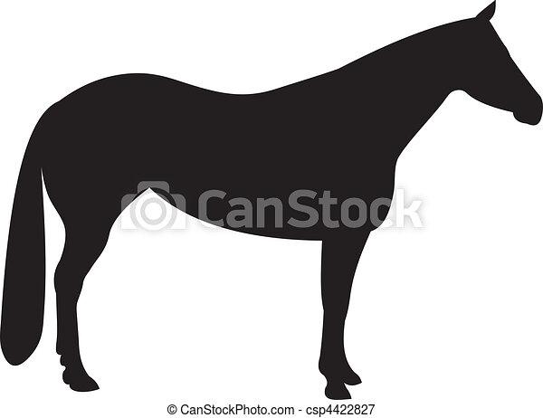 Horse vector - csp4422827