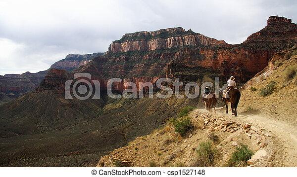 Horseback riding - csp1527148