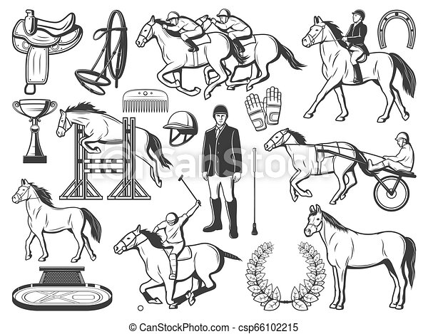 Horserace Polo Racing Sport And Hippodrome Items Equestrian Sport