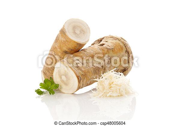 horseradish, root. - csp48005604