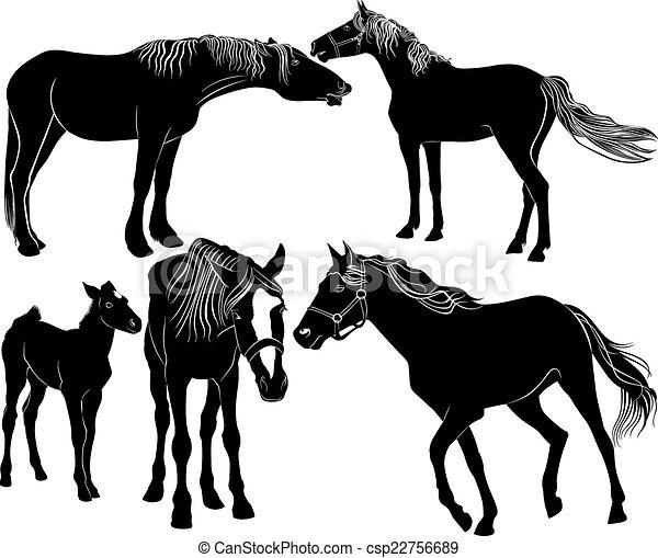 horses - csp22756689
