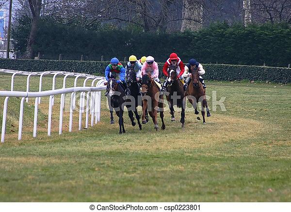 horses racing - csp0223801