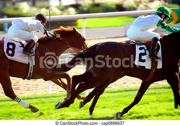 Horses racing - csp0896637