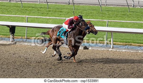 Horses racing - csp1533991
