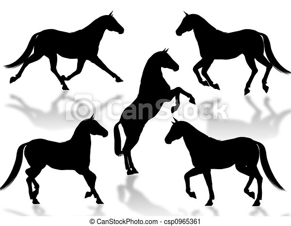 Horses silhouettes - csp0965361