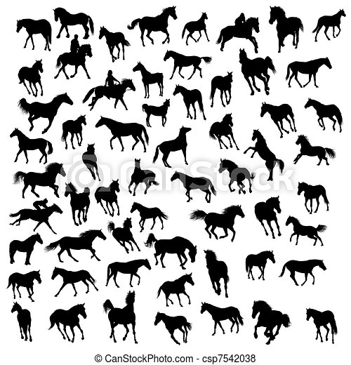 horses silhouettes - csp7542038