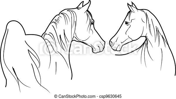 horses vector - csp9630645