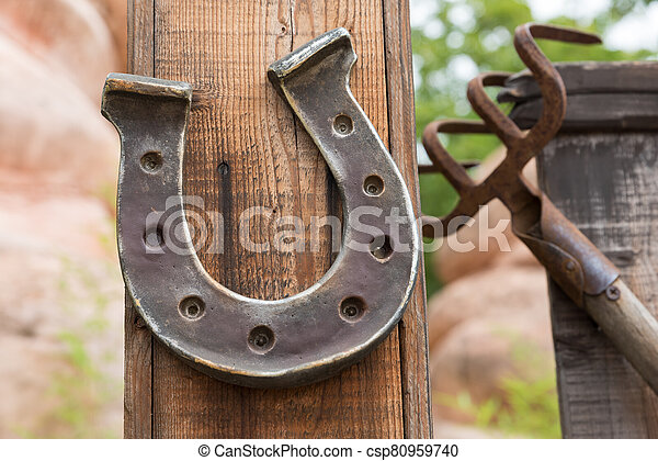 Horseshoe lucky horse - csp80959740