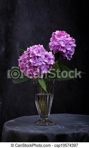 Still Life With Purple Hortensia Flowers In Glass Vase