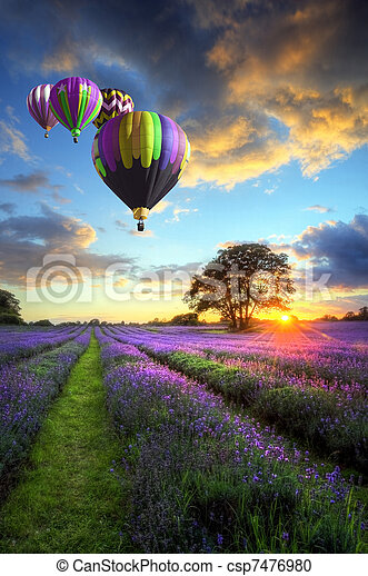 Hot air balloons flying over lavender landscape sunset - csp7476980