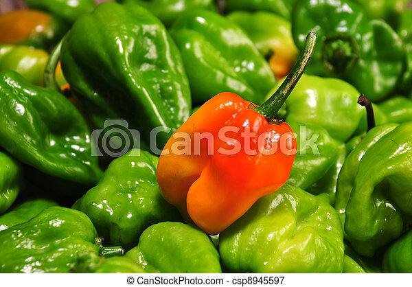 hot chilli peppers from mexico - csp8945597