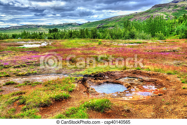 Hot springs in Haukadalur Valley - Iceland - csp40140565