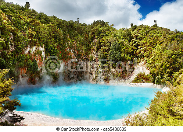 Hot thermal spring, New Zealand - csp5430603
