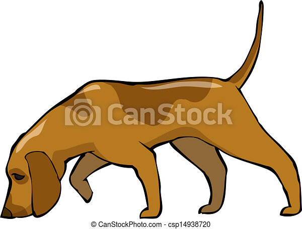 Hound dog - csp14938720