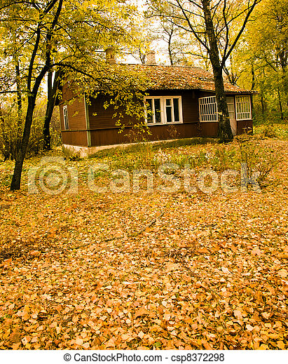 house in park - csp8372298