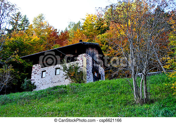 house in the woods - csp6621166