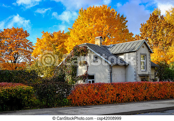 House surrounded by coloured trees on a sunny autumn day - csp42008999