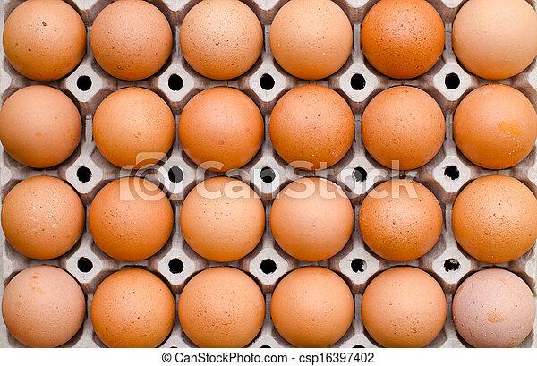 Egg - csp16397402