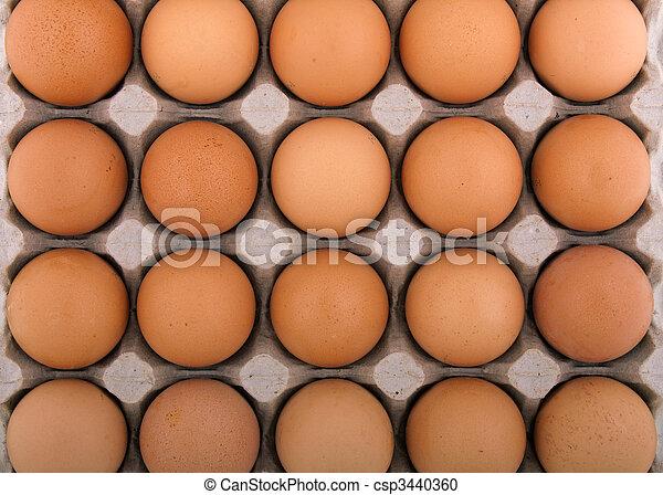 Huevo de pollo - csp3440360