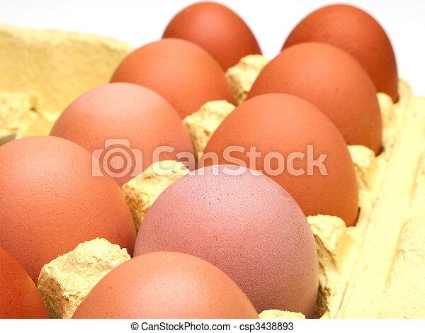 Huevo de pollo - csp3438893