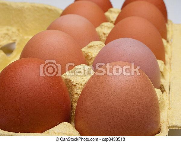 Huevo de pollo - csp3433518