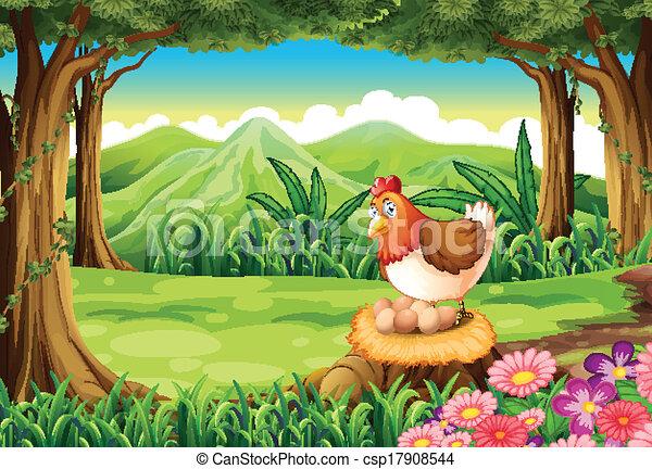 Una gallina poniendo huevos en el bosque - csp17908544