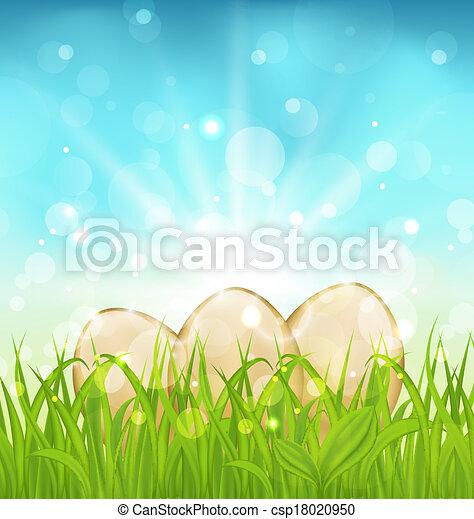 huevos, pasto o césped, pascua, plano de fondo - csp18020950