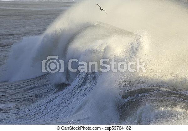 Huge breaking wave - csp53764182