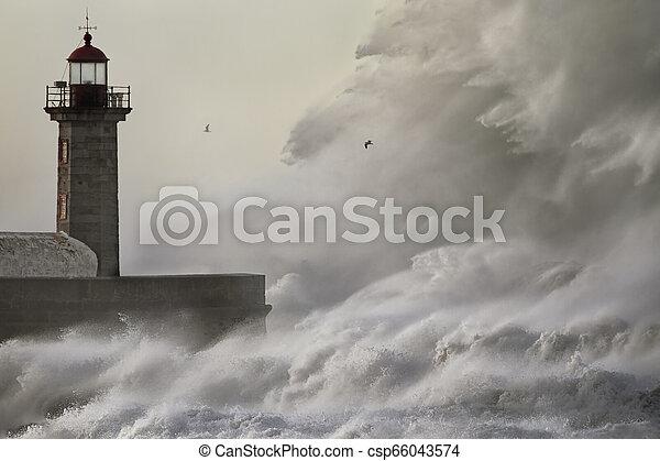 Huge crashing wave - csp66043574