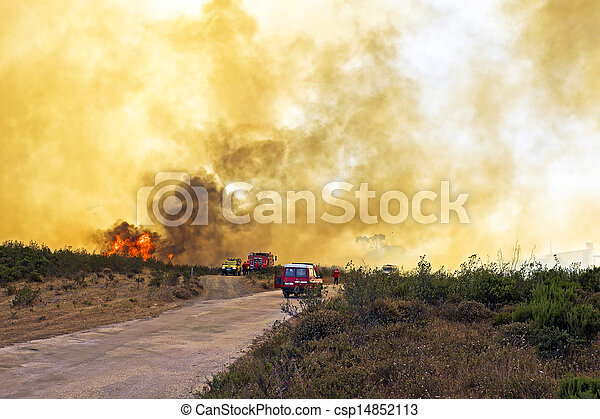 Huge forest fire threatens national park at the westcoast in Portugal - csp14852113