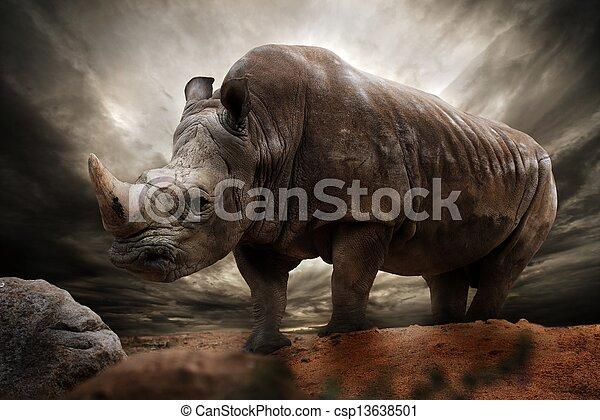 Huge rhinoceros against stormy sky - csp13638501