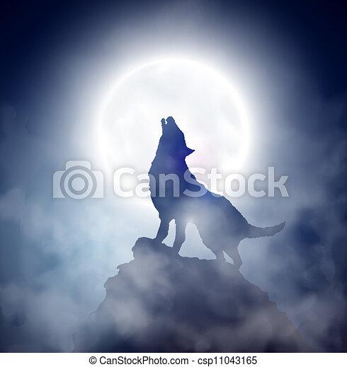 huilend, wolf - csp11043165
