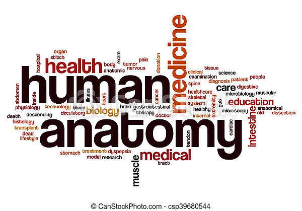 Human anatomy word cloud concept stock photo - Search Photographs ...