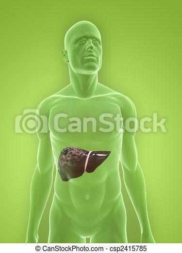 Human bad liver 3d rendered illustration of a human body shape with human bad liver csp2415785 ccuart Choice Image