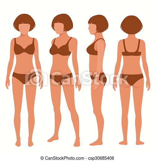 Human body anatomy front back side view vector woman illustration human body anatomy csp30685406 ccuart Images