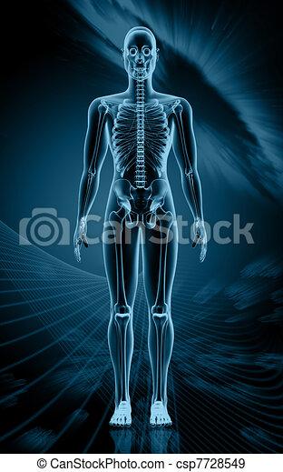 Human body - csp7728549