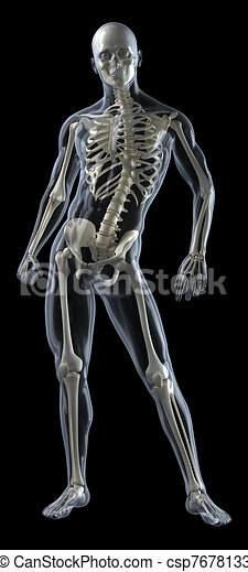 Human Body Medical Scan - csp7678133